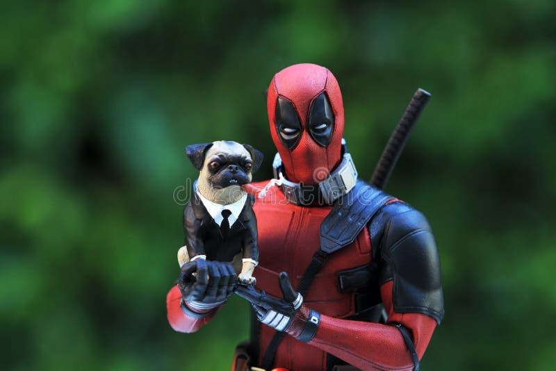 Colpo alto vicino della figura di superheros di Deadpool nell'azione che tiene il cane del carlino, figura 1/6 scala del modello immagine stock libera da diritti