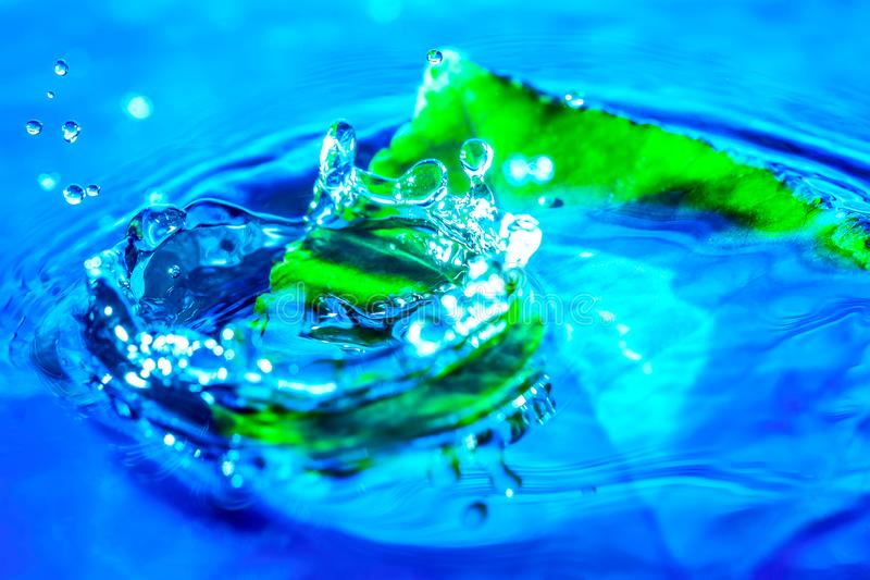 Colpo astratto stupefacente della spruzzata della goccia di acqua vicino alla foglia verde in acqua Priorità bassa della natura M fotografia stock libera da diritti