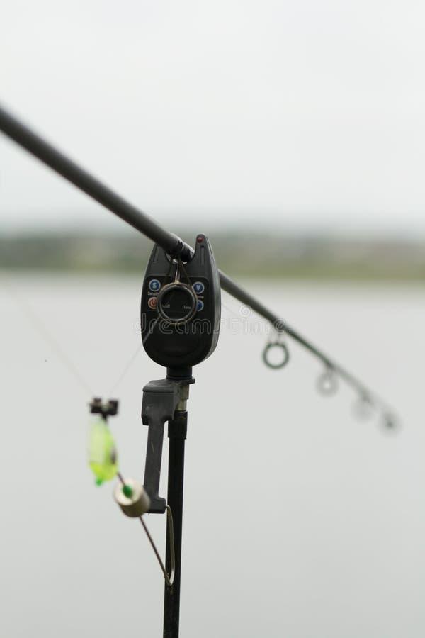 Colpo di pesca di Carpfishing! immagine stock libera da diritti