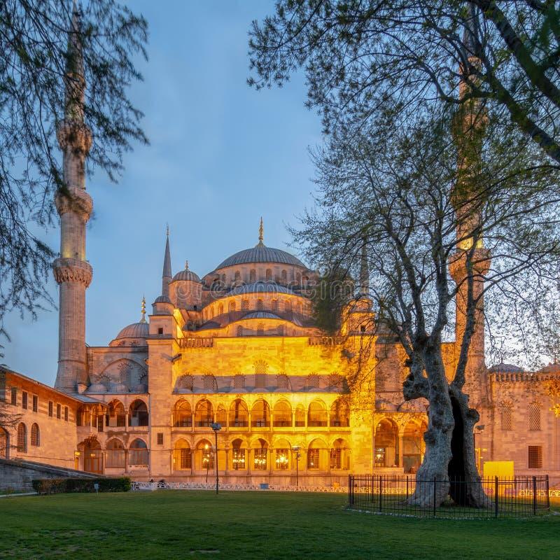 Colpo esteriore di Sultan Ahmed Mosque Blue Mosque dopo il tramonto, Costantinopoli, Turchia immagini stock libere da diritti