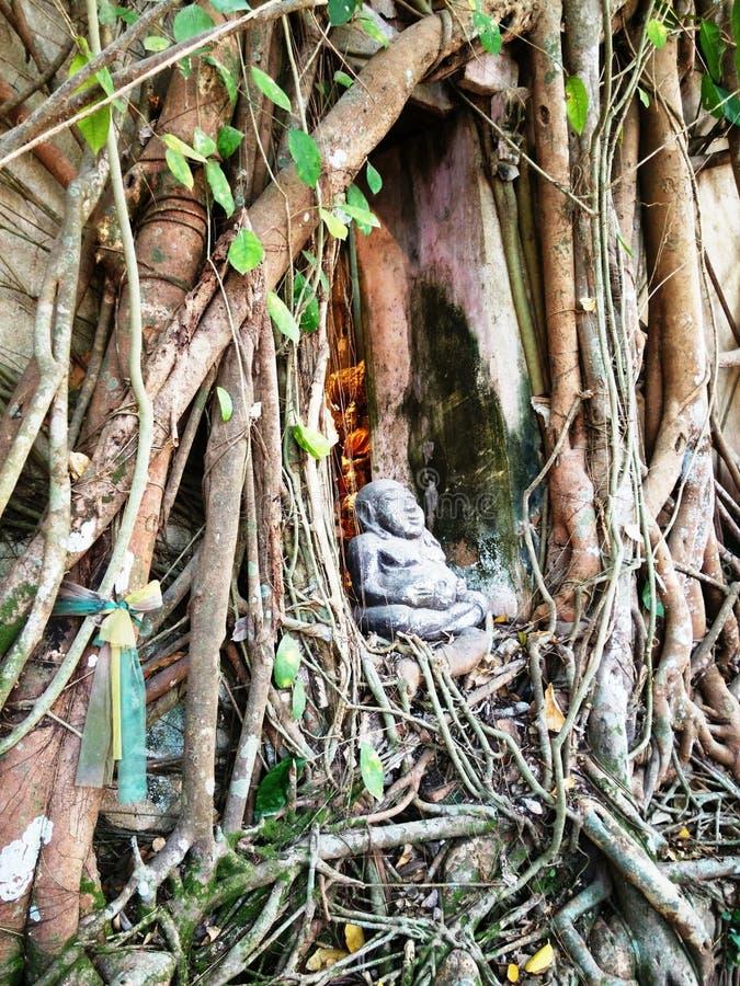 Colpo Kung Camp (tempio buddista) fotografia stock libera da diritti