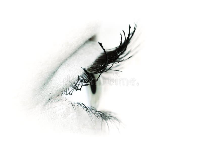 Colpo a macroistruzione dell'occhio della donna fotografia stock