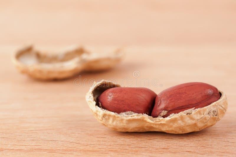 Colpo a macroistruzione di un'arachide aperta su una tabella di legno immagini stock