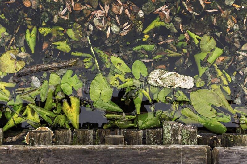 Colpo sopraelevato di un fiume inquinante sporco in pieno delle foglie e della sporcizia fotografie stock libere da diritti