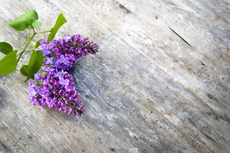 Colpo superiore, fine su del fiore lilla porpora fresco con le foglie verdi, siringa sul fondo di legno e rustico della tavola, f fotografia stock