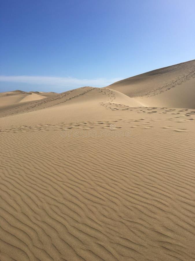 Colpo verticale delle dune di Maspalomas - Gran Canaria immagini stock libere da diritti