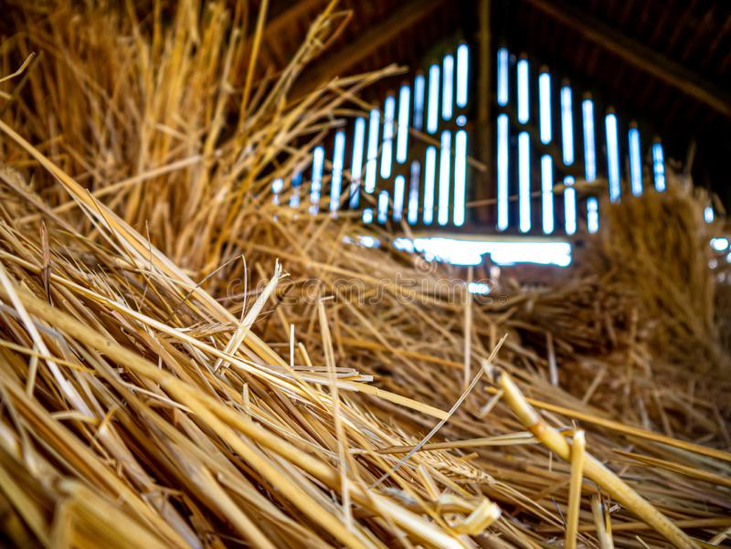Closeup view of a straw pile stock photos