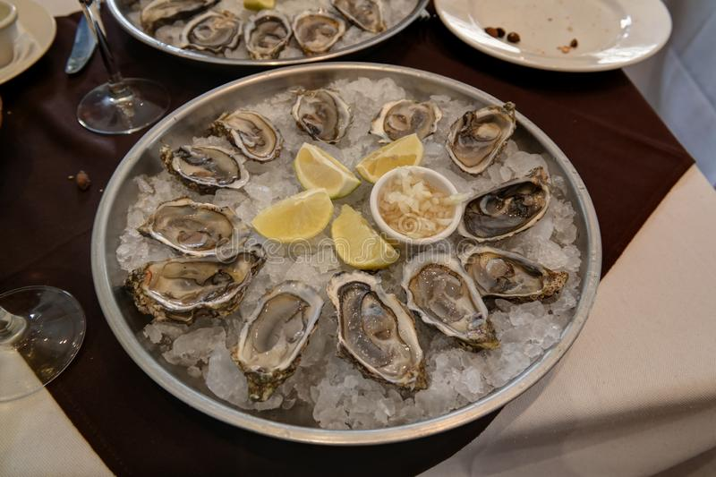 Colseup view to oysters plate with lemon in Casablanca, Morocco royalty free stock images