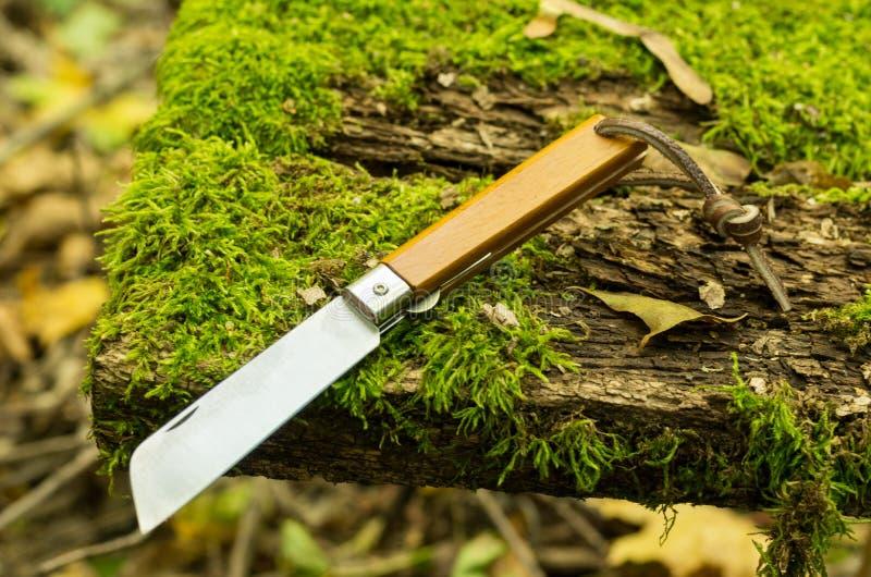Coltello pieghevole portoghese Coltello di tasca con la maniglia di legno immagine stock