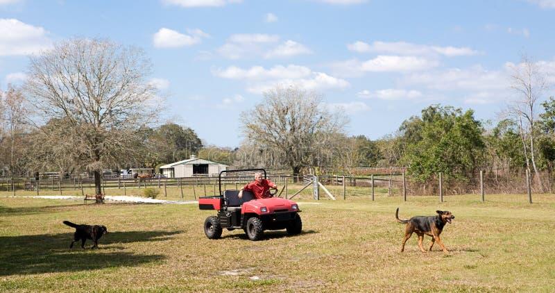Coltivatore & i suoi cani fotografia stock