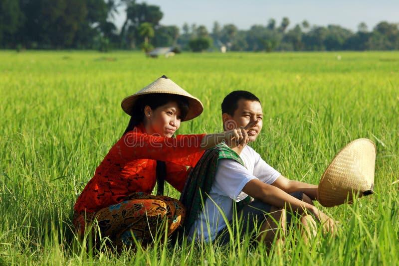 Coltivatore asiatico al giacimento del riso fotografia stock libera da diritti
