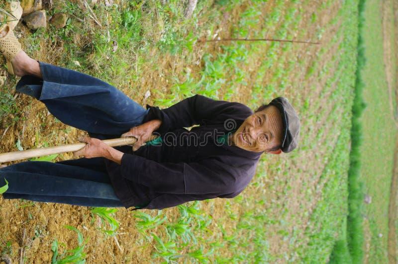 Coltivatore nero di Hmong nei suoi campi fotografia stock