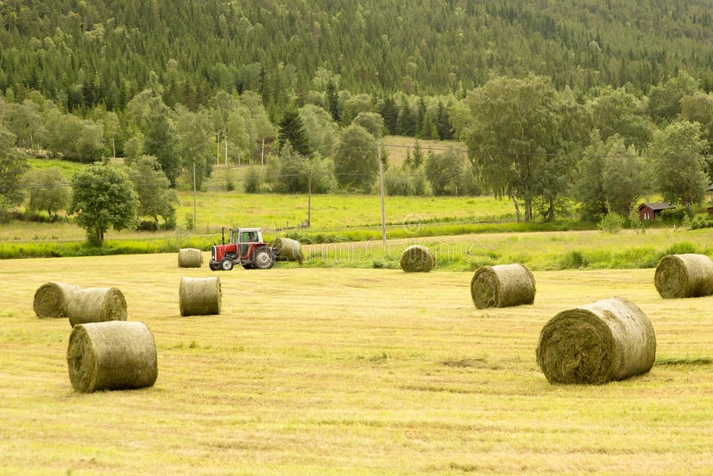 Coltivatore sul trattore con le balle di fieno immagine stock libera da diritti