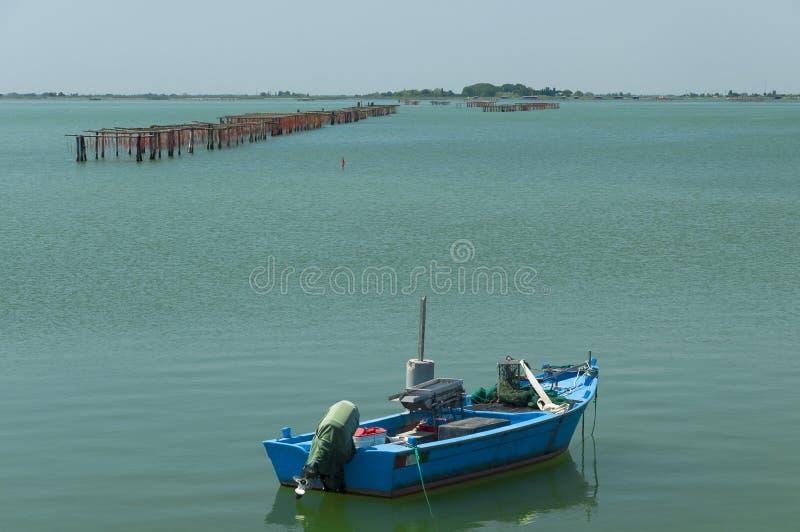 Coltivazione delle cozze, laguna di Scardovari, mare adriatico, Italia fotografia stock