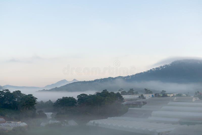 Coltivi nella nebbia e nei raggi di sole magici alla parte 8 dell'alba fotografia stock libera da diritti