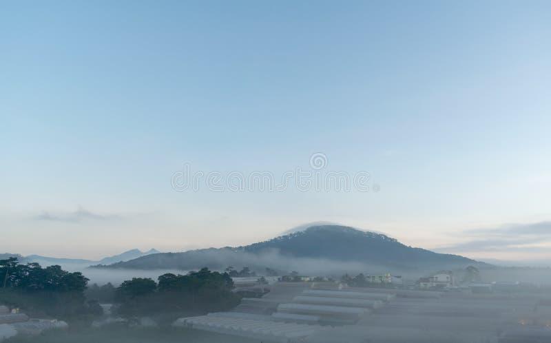 Coltivi nella nebbia e nei raggi di sole magici alla parte 9 dell'alba immagine stock