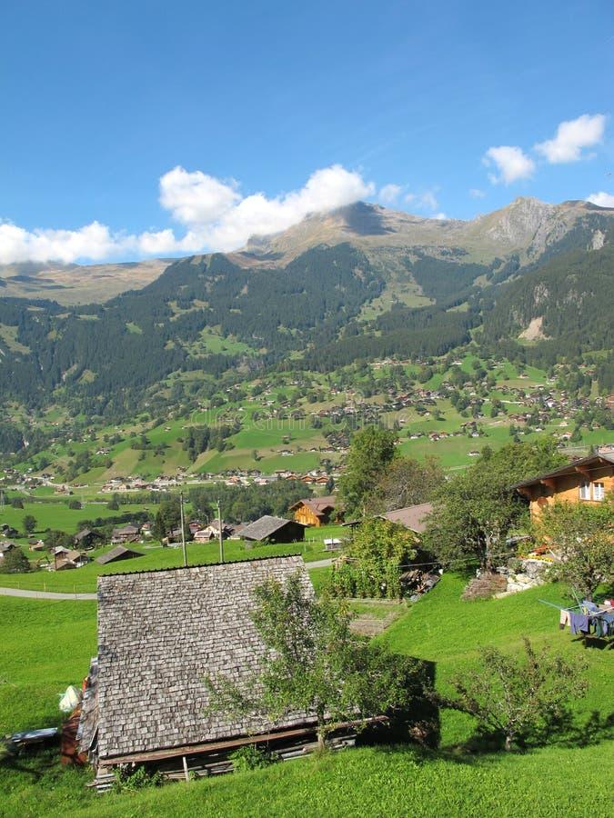 Coltura svizzera con il cottage a Jungefrau immagine stock libera da diritti