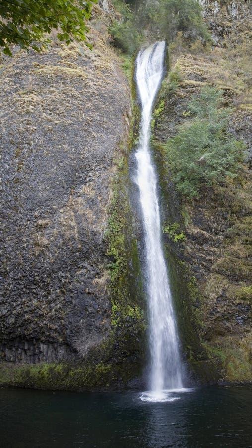 columbia падает horsetail gorge стоковое фото