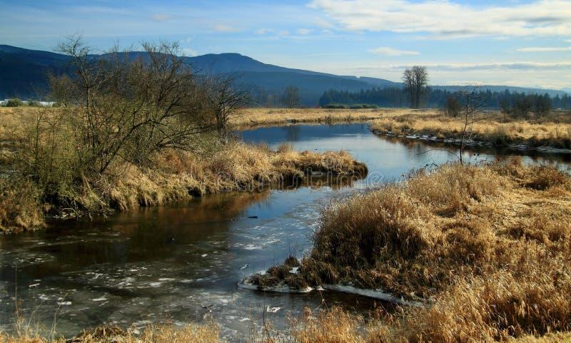 Columbia Britânica do vale de Pitt Lake imagens de stock