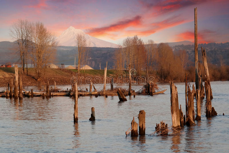 Columbia River in the gorge with Mt Hood at sunset royalty free stock image