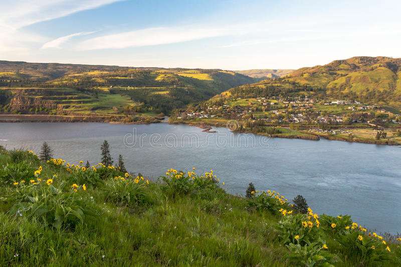 Columbia river gorge National scenic area overlook. Columbia river gorge scenic overlook. Wild flowers meadow at sunset. Rowena Crest view point. Lyle stock photos