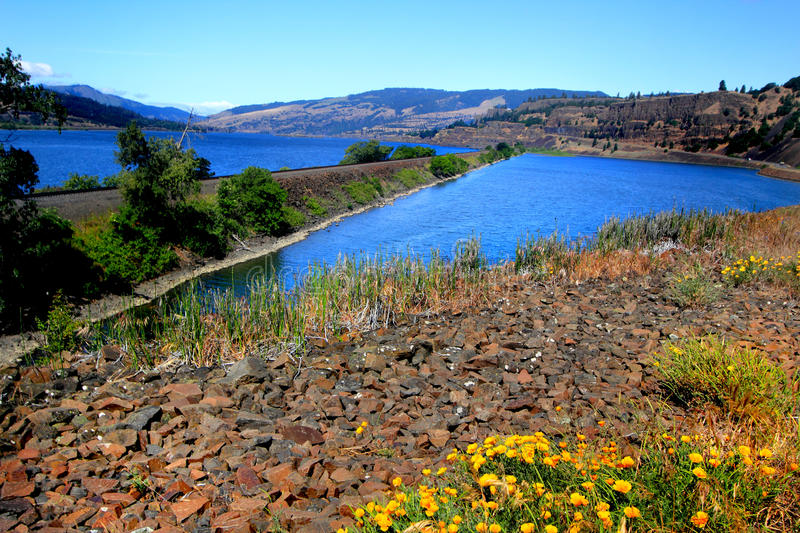 Columbia River royalty free stock photo