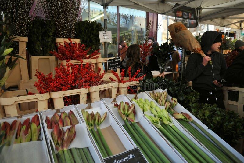 Columbia road flower market London (Royaume-Uni) photos stock