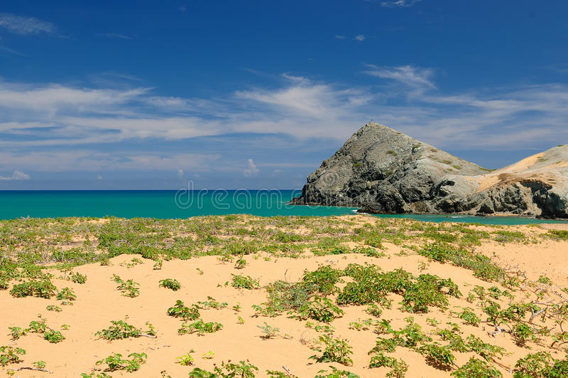 Columbiaans strand stock foto