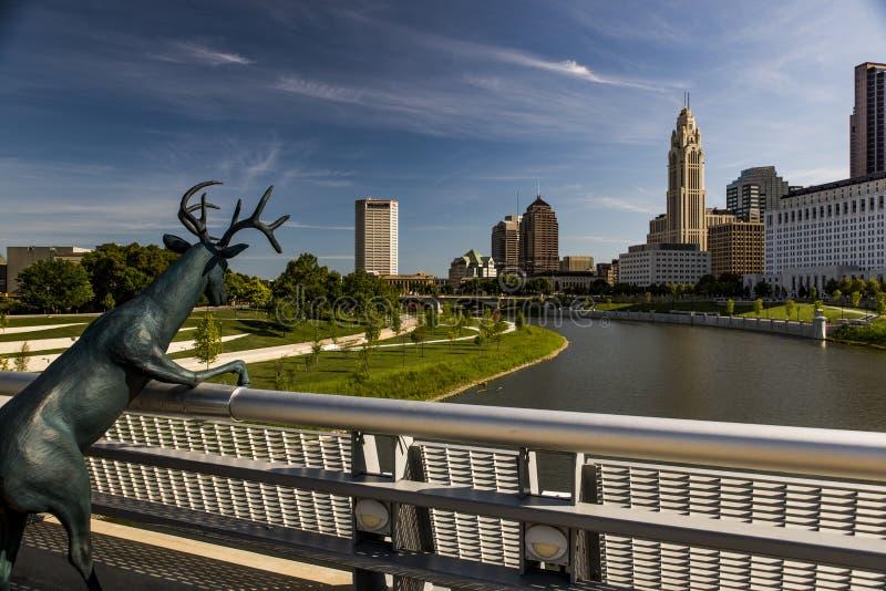 Columbus Ohio horisont och sikt för Scioto flodmorgon royaltyfria foton
