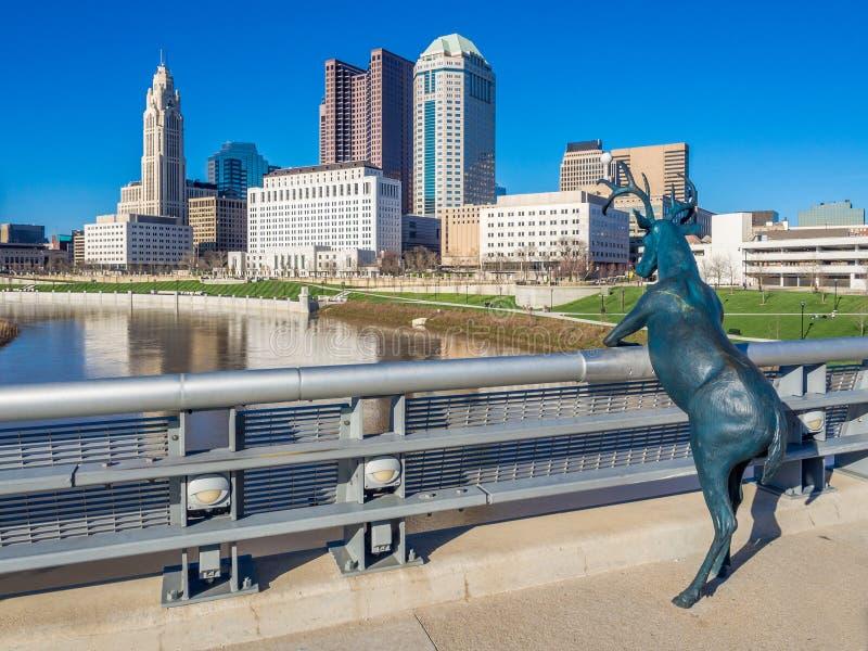 Columbus Ohio Skyline royaltyfri bild