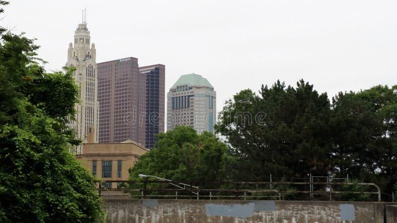 Columbus Skyline till och med träden royaltyfri bild