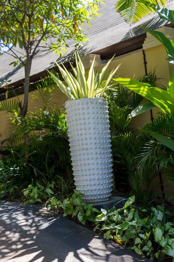 Download Columna Adornada En Jardín Formal Del Balinese Imagen de archivo - Imagen de pilar, handcrafted: 41909711