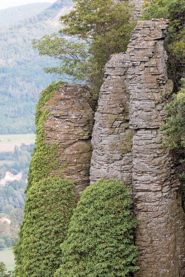 Columnar basalt royaltyfria foton