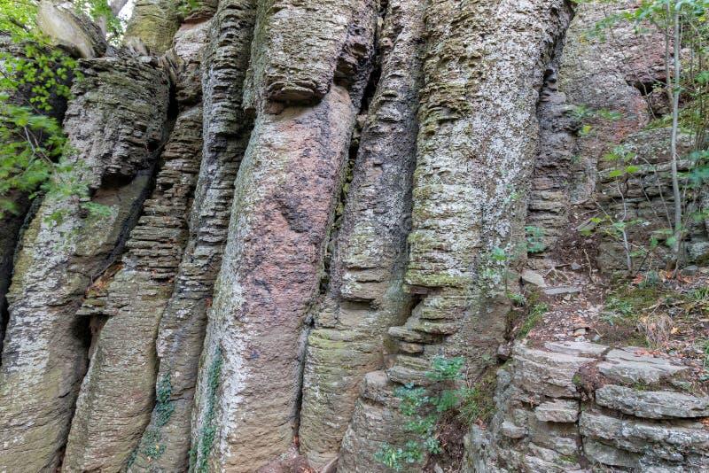 Columnar basalt royaltyfri fotografi