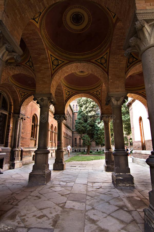 Columnas, elementos constructivos en la universidad de Chernivtsi imágenes de archivo libres de regalías