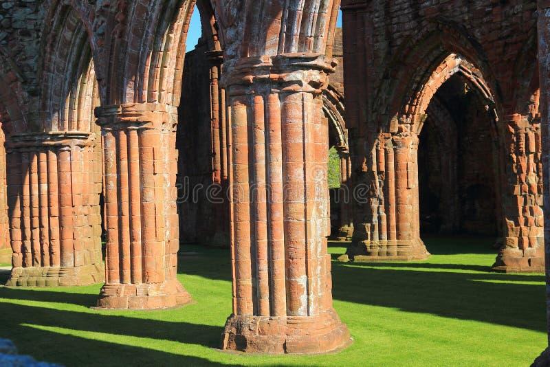 Columnas fluidas de Nave en la abadía de SCariño, Nueva Abadía, Dumfries y Galloway, Escocia foto de archivo libre de regalías