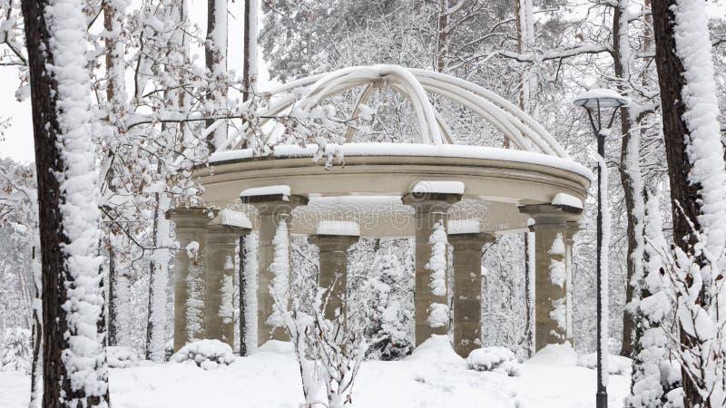 Columnata hermosa en el parque nevoso, mañana fresca del invierno de Bucha Ucrania imágenes de archivo libres de regalías