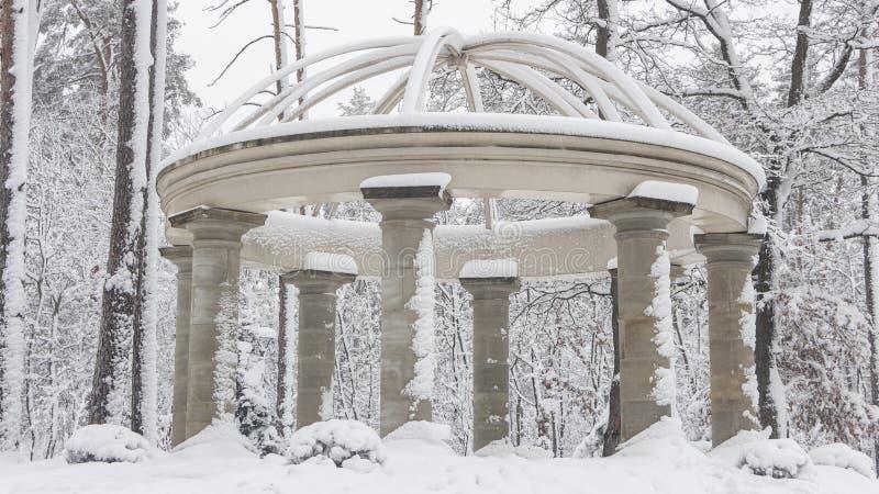 Columnata hermosa en el parque nevoso, mañana fresca del invierno de Bucha Ucrania fotografía de archivo
