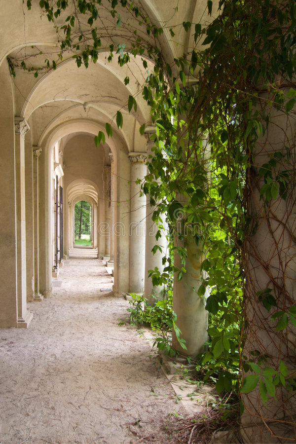 Columns and arches. Arches and columns with green leaves royalty free stock image