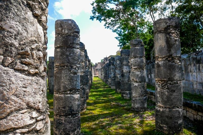 Columns and columns royalty free stock photos