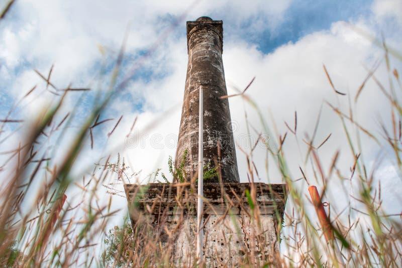 Coluna antiga na floresta fotografia de stock royalty free