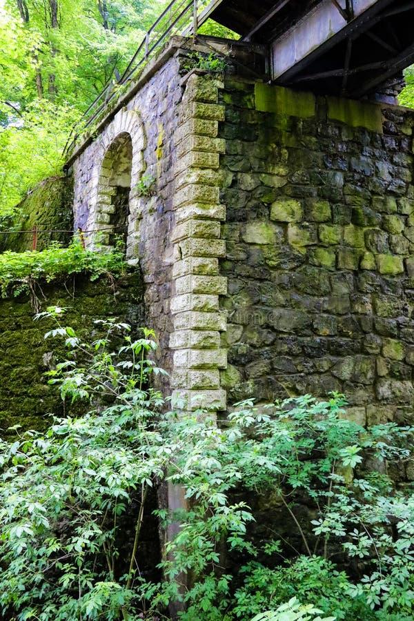 A coluna da ponte velha das pedras cercadas pela floresta fotos de stock royalty free