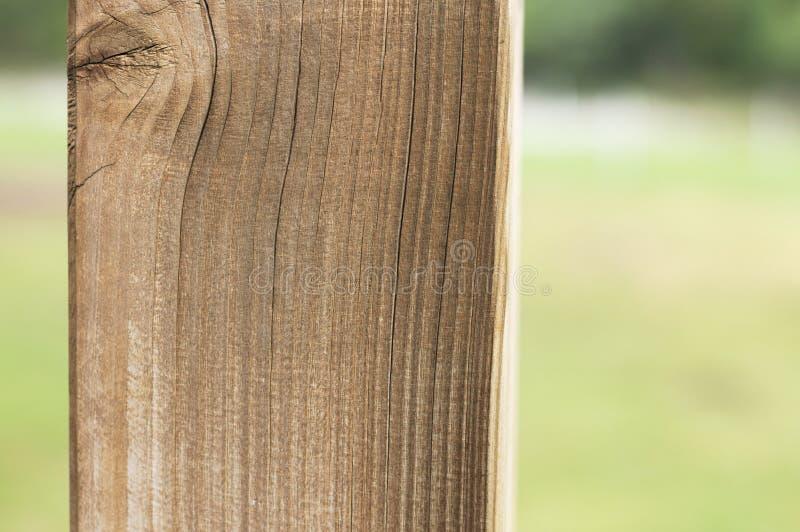 Coluna de madeira isolada no parque - fundo arquitetónico imagens de stock royalty free