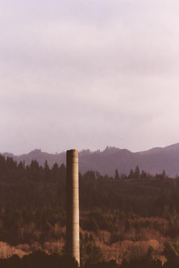Coluna de pedra alta construída na floresta imagem de stock royalty free