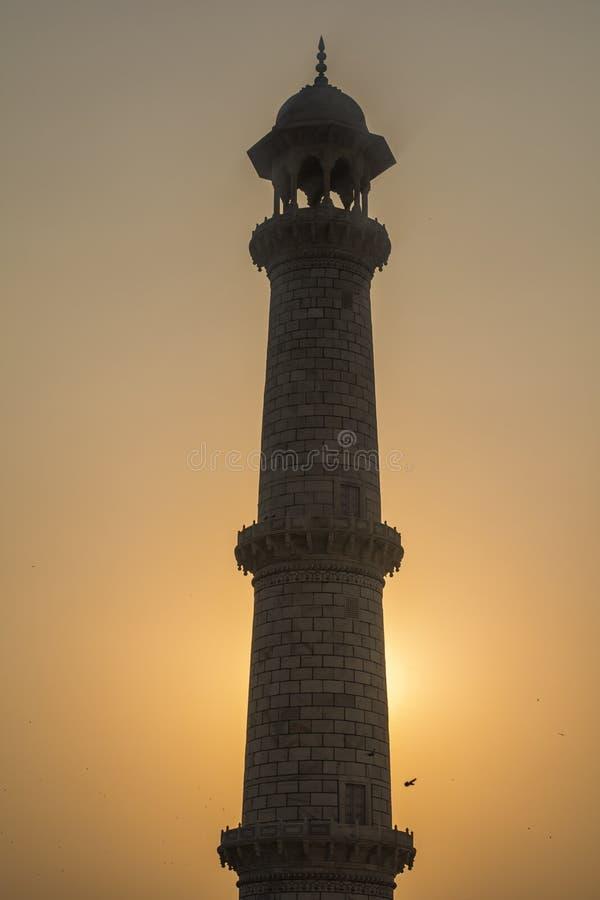 Coluna de Taj Mahal Silhoutte View, com por do sol atrás fotos de stock