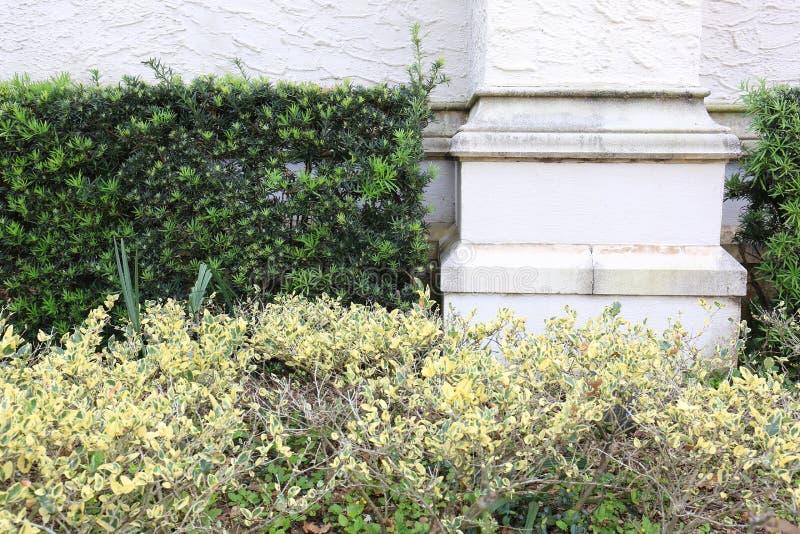 Coluna do cimento do arenito com fundo verde das plantas da conversão foto de stock royalty free