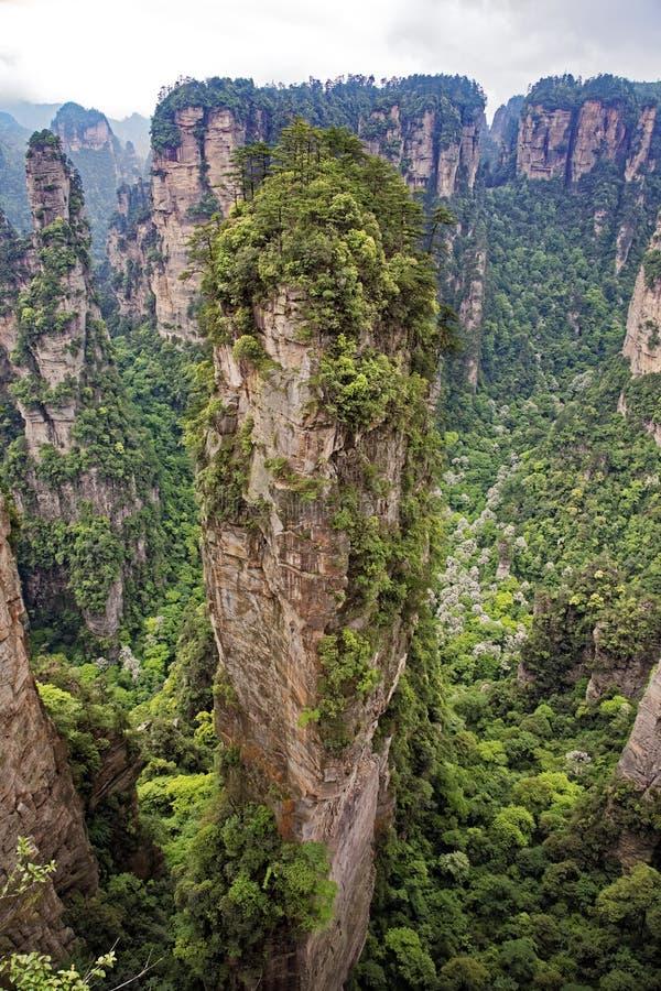 Coluna famosa da montanha de flutuação do Avatar, montanhas de Zhangjiajie fotos de stock
