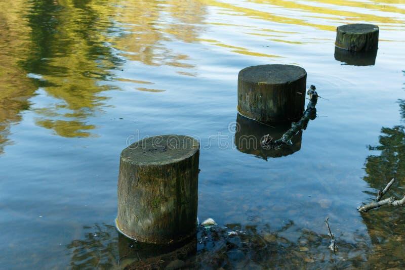 Colunas de madeira velhas do cais imagens de stock royalty free
