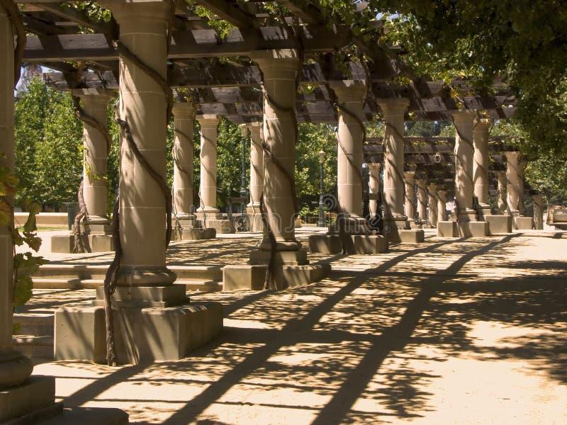 Colunas do vinhedo foto de stock royalty free