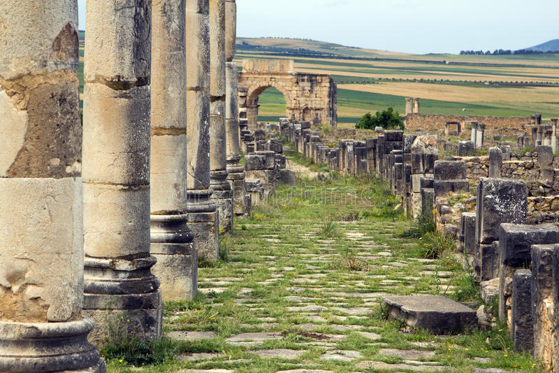 Colunas e entrada romanas da cidade, Volubilis, Marrocos fotografia de stock royalty free